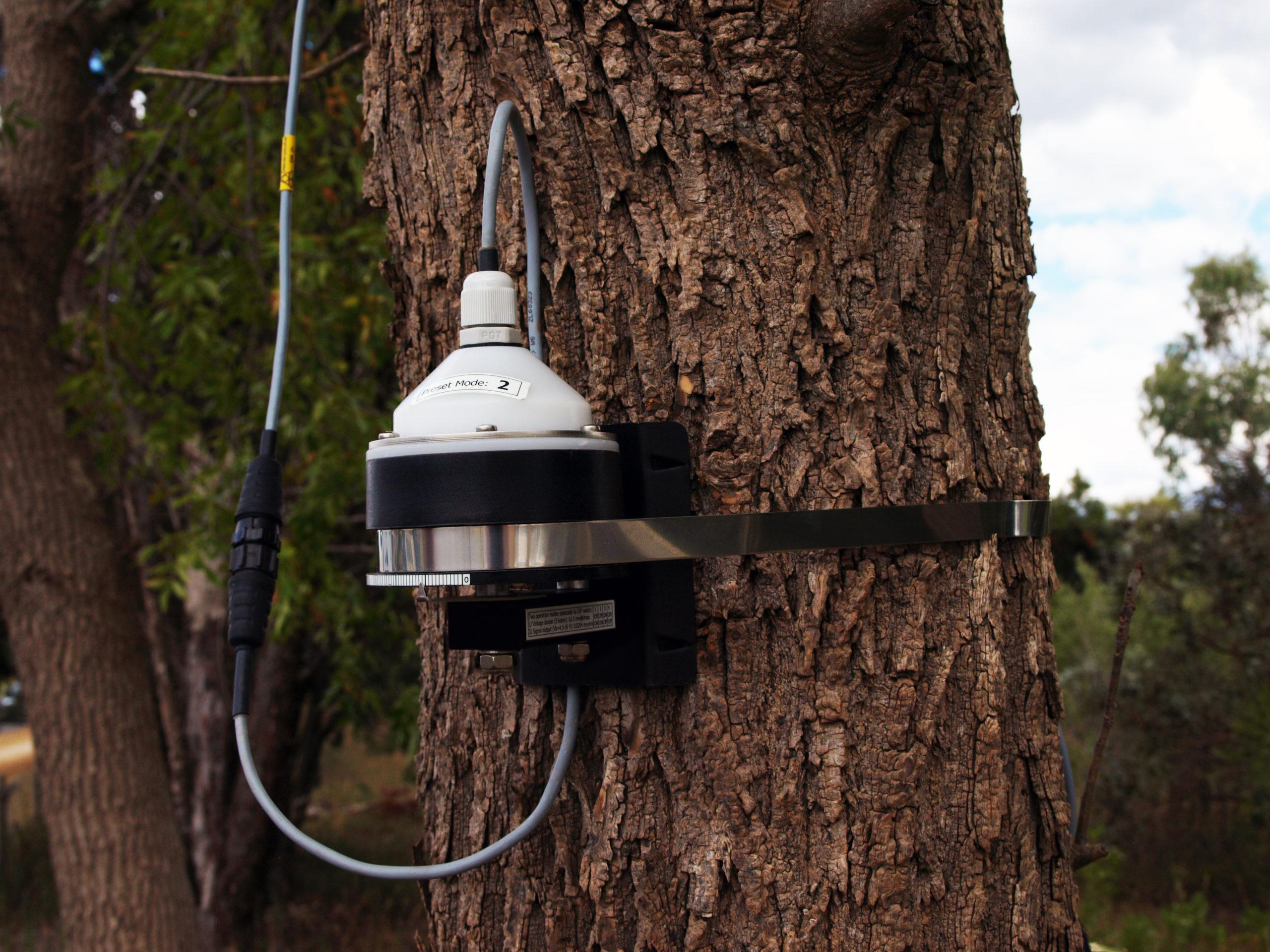 DBV60 Voltage Band Dendrometer